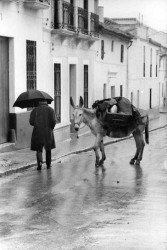 Madrid, 1966. Foto: Eve Arnold