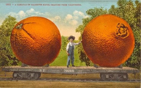 Pohľadnica z roku 1909.