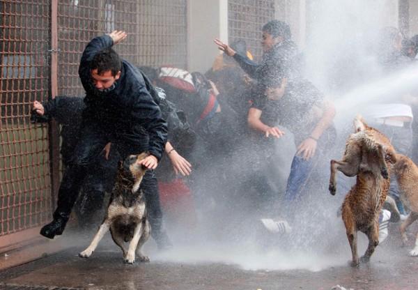Foto: Carlos Vera / Reuters